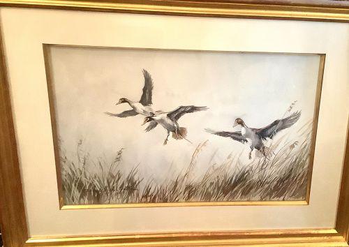"American Artist Frank  Vining Smith 1879-1967 ""Water Fowl Study"""