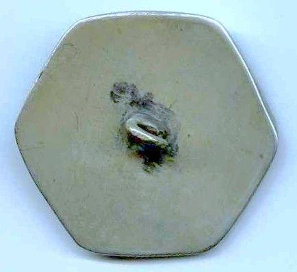 A Nice Cloisonne 19th c  Ginbari Button