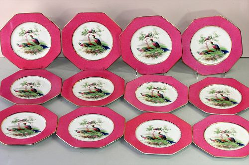 12 English Wedgwood Porcelain Pheasant Game Plates