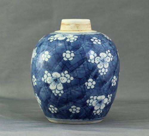Chinese Blue & White Porcelain Hawthorn Ware Tea Jar, 18th C.