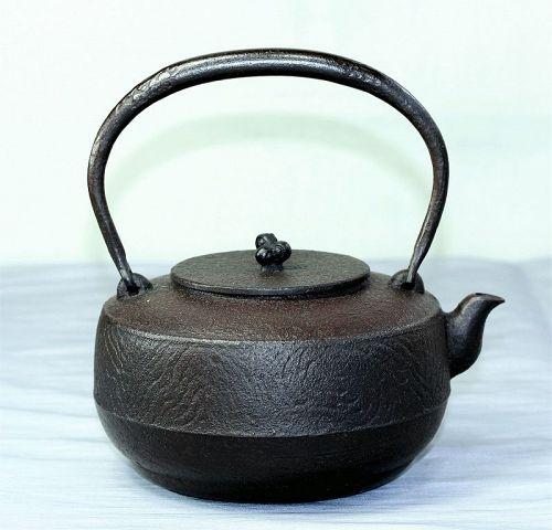 "Japanese Cast Iron Tea Kettle, ""Hojudo"" mark"