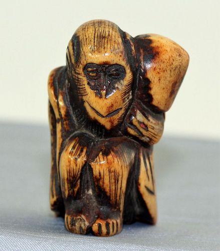 Japanese Staghorn Monkey Netsuke, 18th C.