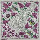 VINTAGE STATE SOUVENIR HANDKERCHIEF HANKY FOR NEW HAMPSHIRE