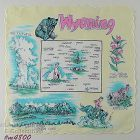 VINTAGE STATE SOUVENIR HANKY FOR WYOMING