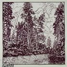 SCENIC VINTAGE HANDKERCHIEF TITLED THE NORTH WOODS