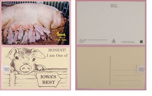 LOT OF TWO IOWA VINTAGE POSTCARDS,IOWA PORK STATE POSTCARDS