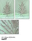 6 FT. ALUMINUM TREE -- STRAIGHT NEEDLE