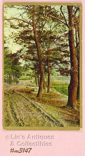 VINTAGE COUNTRY ROAD POSTCARD PRINTED IN GERMANY