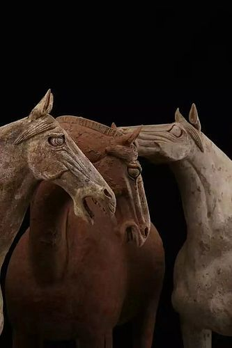 Tang dynasty handsome horses