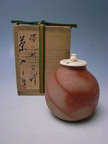 Bizen Chaire by Moritoki Taiyu (b)