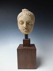 Head of Buddha, Gandhara, 1st to 4th century AD