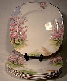 Royal Albert BLOSSOM TIME Nappies and Salad Plates