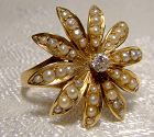 Edwardian 14K SUNBURST DIAMOND & SEED PEARL RING 1900 1910