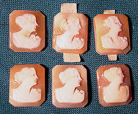 6 UNSET SHELL PORTRAIT CAMEOS c1930s