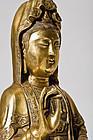 Huge Gilt Bronze Guan Yin 19th. century - 10 kg heavy