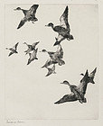 "Frank Benson, Etching, ""Black Ducks No. 2"" 1922"