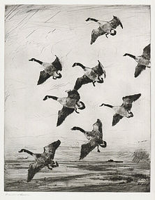 "Frank W Benson, etching, ""Hovering Geese"" 1922"
