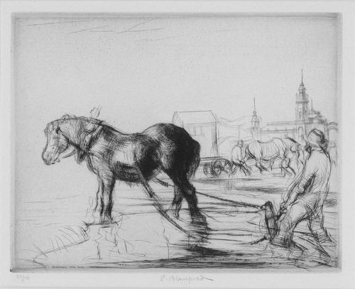 "Edmund Blampied, etching, ""Ostend Horse"""
