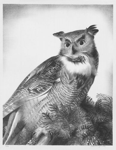 "Stow Wengenroth, lithograph, ""Great Horned Owl"""