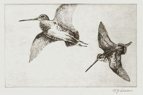 William Schaldach etching, Windy Day, Jack-Snipe