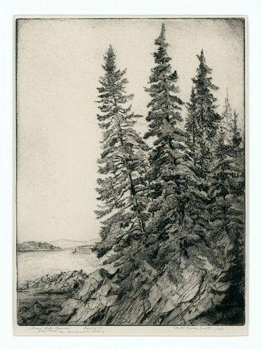Ruth Swett etching, Deer Isle Spruces,