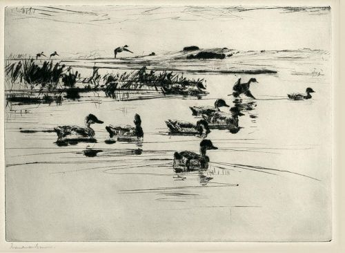 Frank Benson etching, Teal, pencil signed