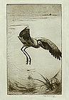 "Fuji Nakamizo, Etching, ""Marsh Crane"""