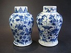 Chinese Pair of Porcelain 18th Century Vases