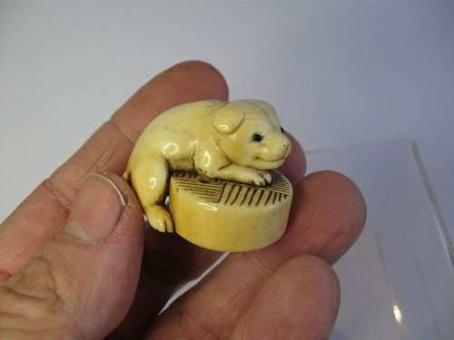 Japanese Ivory Netsuke of a Puppy Resting, Signed Rentei