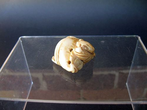 Chinese Foo Dog Toggle / Netsuke 1