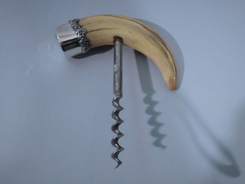 Sterling Silver and Boar Tusk Corkscrew C 1900