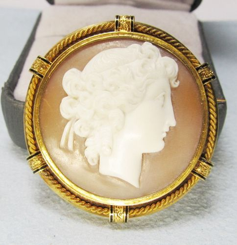 Victorian Round Shell Cameo Broach