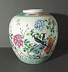 Good Large Guangxu Famille Rose Jar, 19C