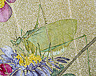 A Chinese Fan Painting, Cicada, 19thC.