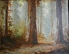 California Redwoods - Charles Henry Harmon (1859-1936)