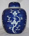 Chinese Qing Guangxu Blue White Hawthorn Prunus Jar