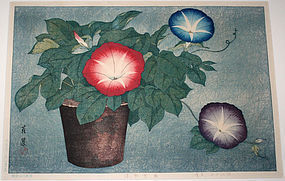 Japanese Shin Hanga Woodblock Print Inuzuka Taisui Morning Glories