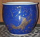 Chinese Guangxu Powder Blue Gilt Jardiniere Cache Pot