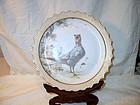 Doulton Burslem Bird Cabinet Plate 1888