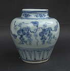 Ming Blue & White Jar with Grapes Motive, 15th Century