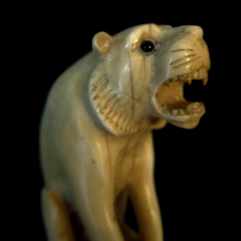 Ivory Lion Walking Stick c.1900-1910 Rosewood