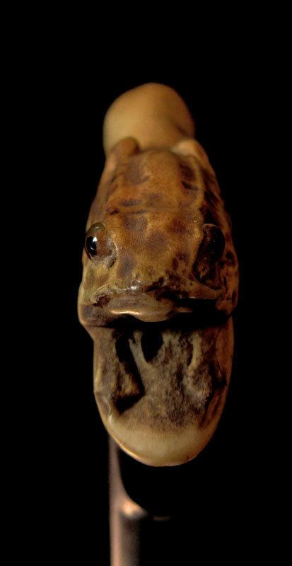 Carved Bone Frog Walking Stick