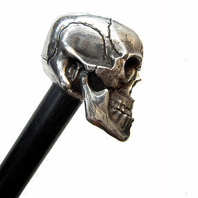 Silver Skull Walking Stick