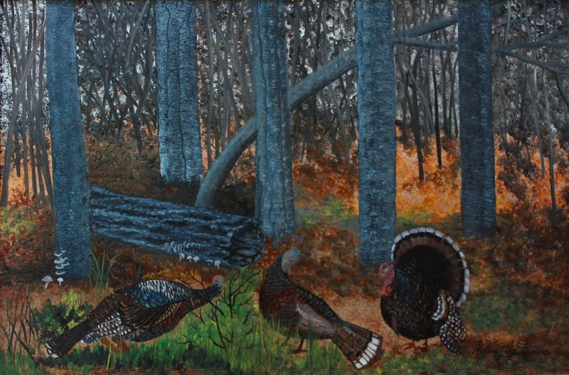 Turkeys in the Woods by Helen LaFrance