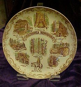 Vintage scenic souvenir plate of  California Redwoods