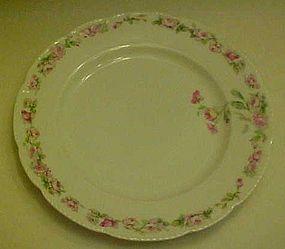 Bassett Limoges Austria luncheon plate BSS24