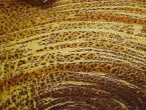 Awesome Murano art glass bowl brown tan mica swirl