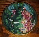 Calliope Hummingbird and Gladioli plate Cyndi Nelson