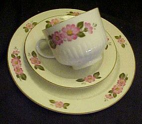 Winterling Bavaria plate cup and saucer pink blossoms