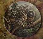 Knowles Vast View Saw-whet Owls 5th plate